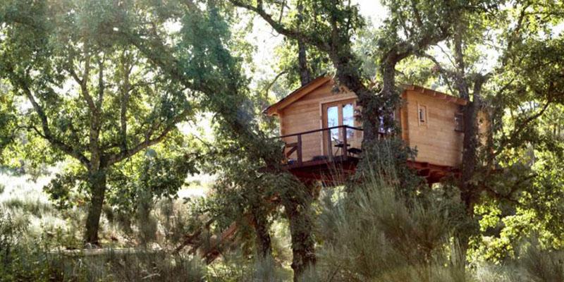 Dormir en los rboles caba as en los rboles de extremadura - Casas en los arboles girona ...